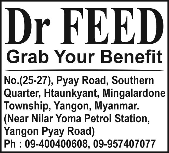 Dr. Feed