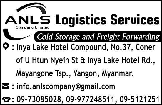 ANLS Co., Ltd.