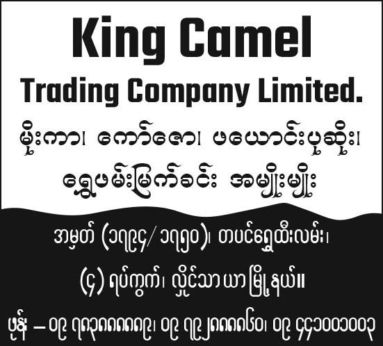 King Camel