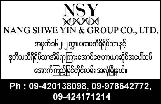 Nang Shwe Yin and Group Co., Ltd.