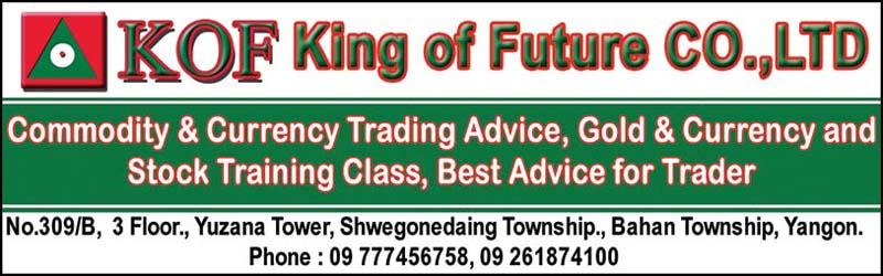 King of Future Co., Ltd.