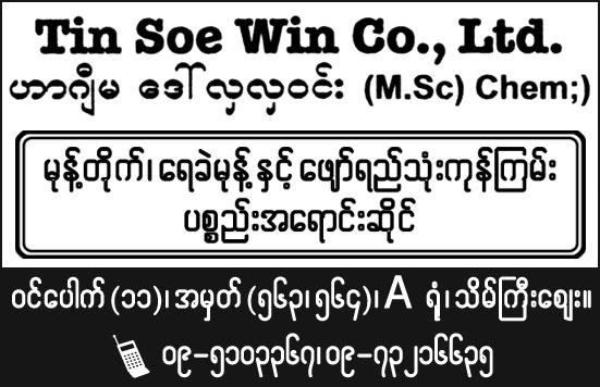 Tin Soe Win Co., Ltd.