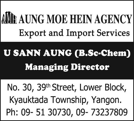 Aung Moe Hein Agency