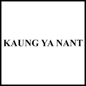 Kaung Ya Nant Int'l Trading Co., Ltd.